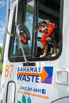 BW-truck-puppy-low-res2