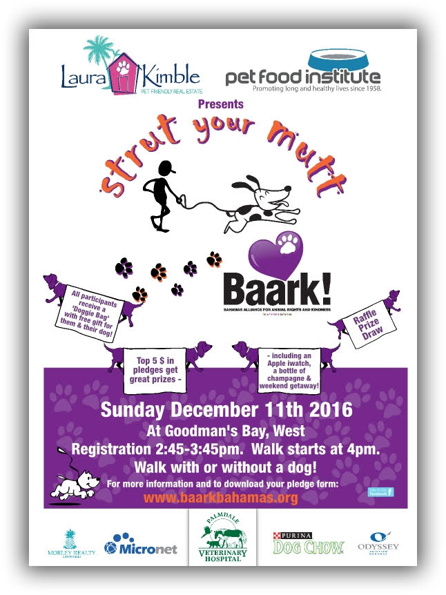 Strut your Mutt poster