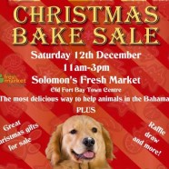 Baark Christmas Bake Sale